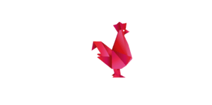 French tech Pau Bearn blanc